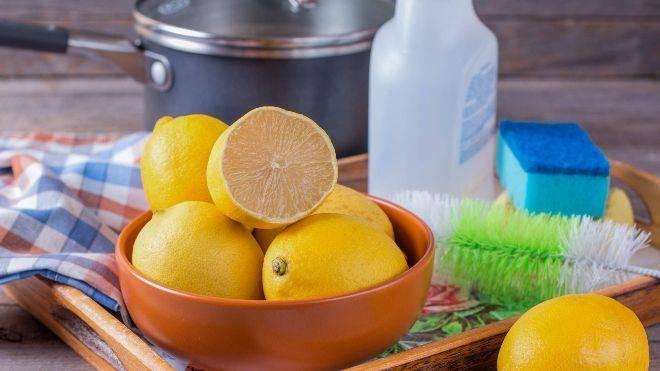 Как хранить лимоны в домашних условиях — 5 моих любимых способов