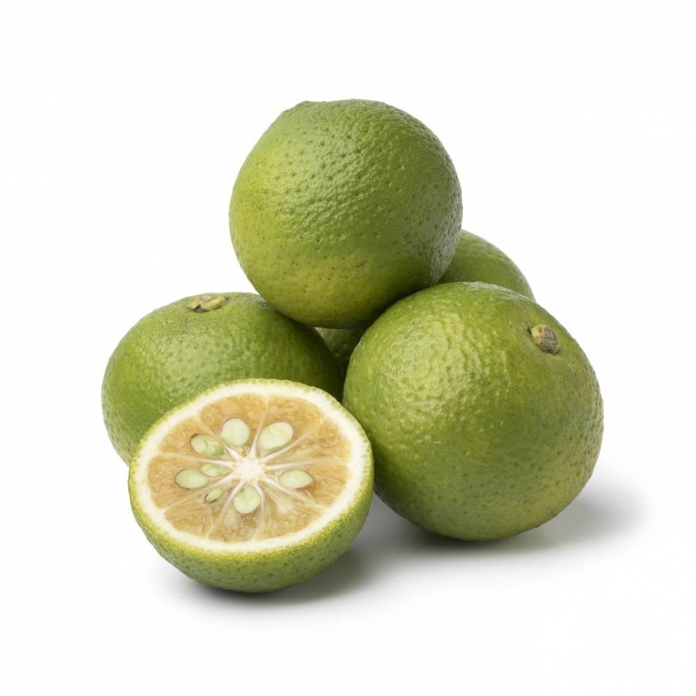 Лайм: полезные свойства и вред фрукта, как применять   здоровье и красота