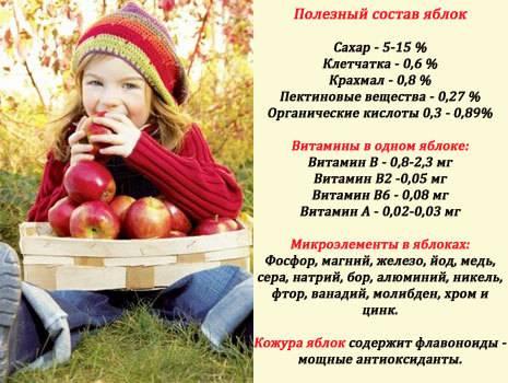 Сушеные яблоки и их влияние на организм