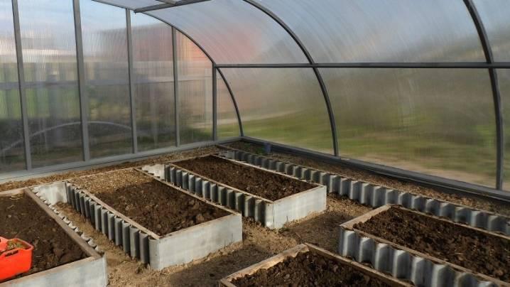 Чем обработать землю в парнике от болезней и вредителей осенью + на зиму