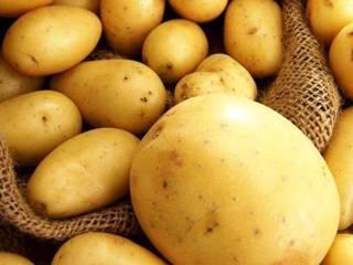 Картофель польза и вред для здоровья организма женщины, мужчины