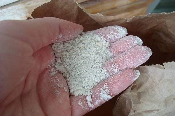Кровяная мука как удобрение для увеличения количества азота в грунте