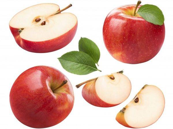 Можно ли есть косточки от яблок, их польза и вред отравление.ру можно ли есть косточки от яблок, их польза и вред