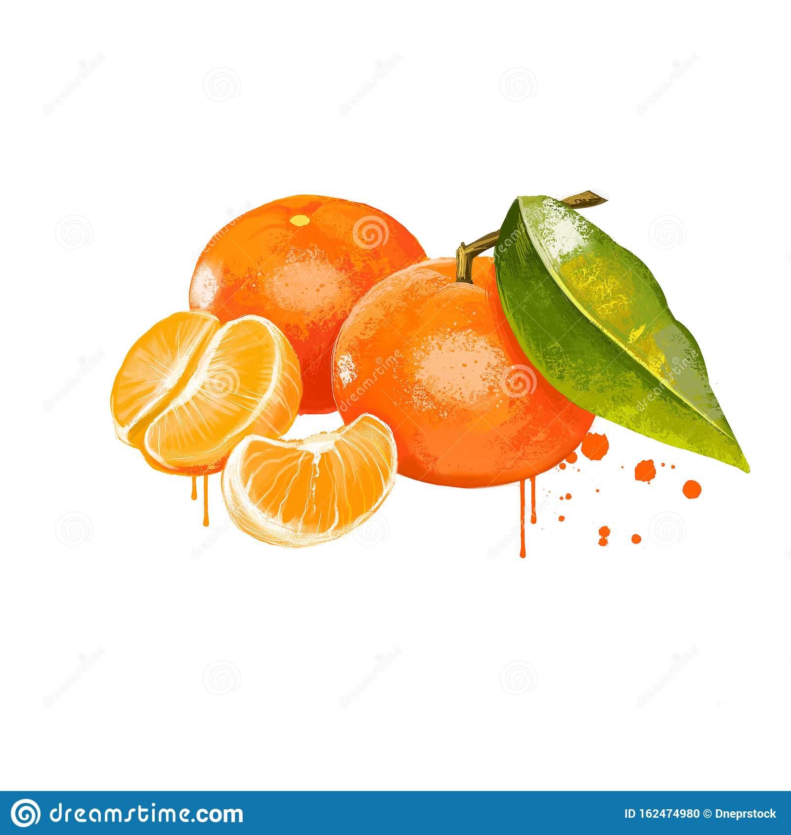 Гибридные фрукты. клементин, его полезные свойства » будьте здоровы!