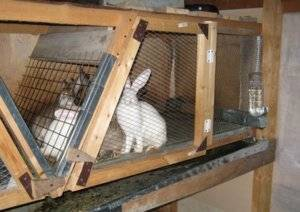 Крольчатник своими руками пошаговая инструкция