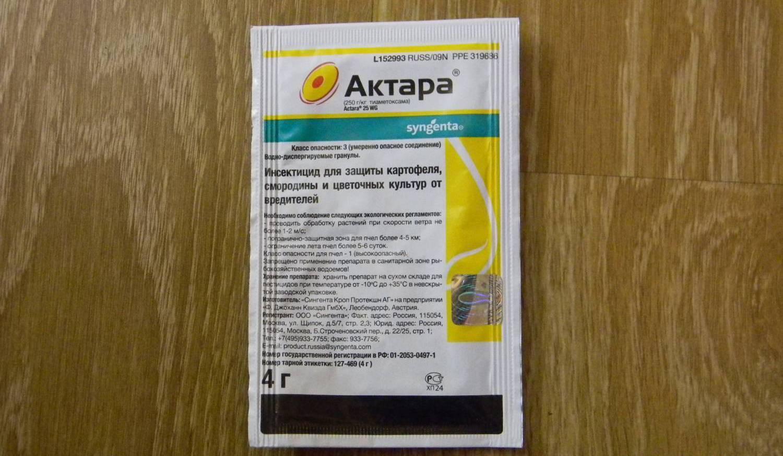 Актара: действие, применение в огороде, для комнатных растений