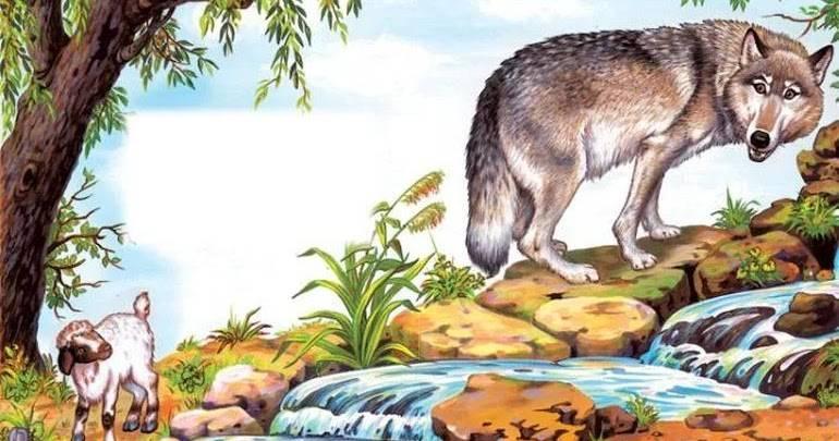 Курдючные овцы (30 фото): описание породы баранов. что такое курдюк? максимальный вес калмыцких особей, особенности разведения