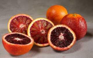 Апельсин королёк: фото, отзывы, описание, характеристики.