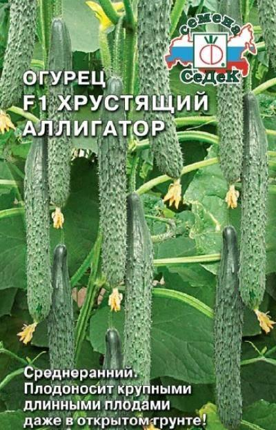 Огурец аллигатор f1: описание сорта, фото, отзывы, урожайность