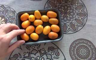 Танжерин, что это за фрукт: описание и фото, свойства, в чем разница с мандарином