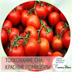 К чему снятся красные помидоры? сонник - красный помидор во сне.