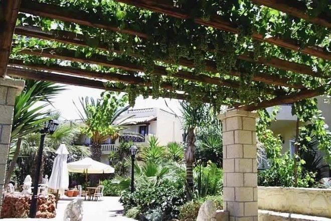 Как сделать навес для винограда? - про дизайн и ремонт частного дома - rus-masters.ru