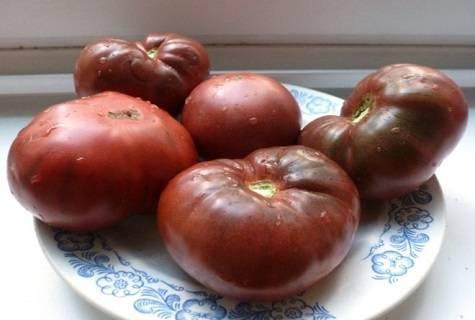 Томат черный крым: характеристика и описание сорта, урожайность с фото