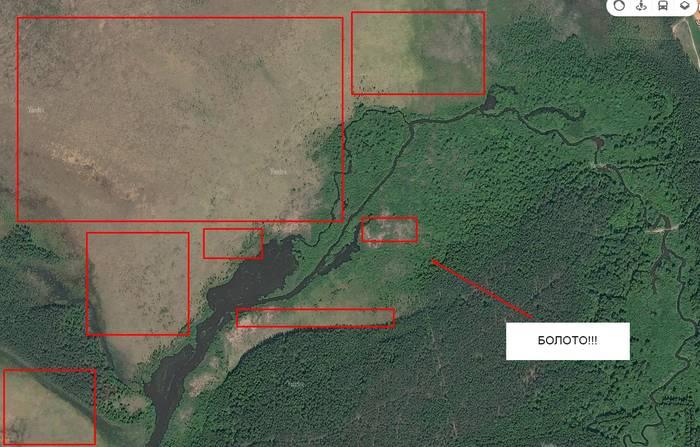 Грибы ростовской области 2021: когда и где собирать, сезоны и грибные места