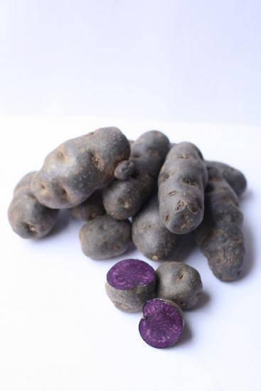 Фиолетовая картошка: полезные свойства, описание сортов с фото