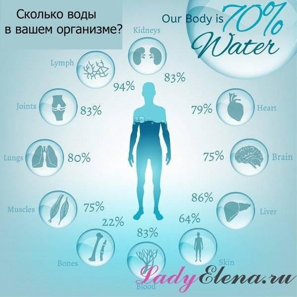 Вода с лимоном помогает похудеть? - lifekorea.ru