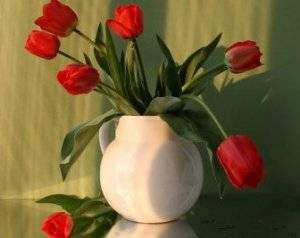 Как хранить тюльпаны до посадки? когда выкапывать луковицы тюльпанов - sadovnikam.ru