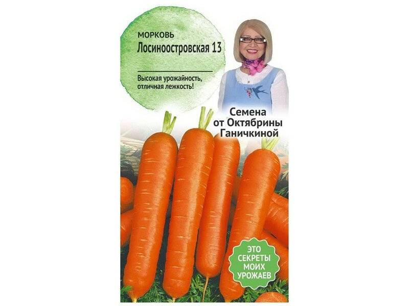 """Морковь лосиноостровская - описание сорта, фото, отзывы, посадка и уход - журнал """"совхозик"""""""