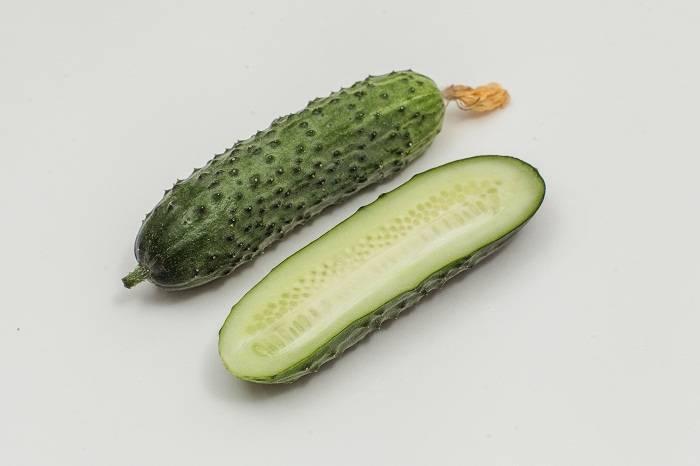 Огурец «шоша f1»: описание характеристик сорта. посадка, уход, урожайность и выращивание из семян (фото)