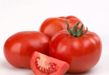 Томат толстой f1 – характеристика и описание сорта, фото, урожайность, отзывы земледельцев
