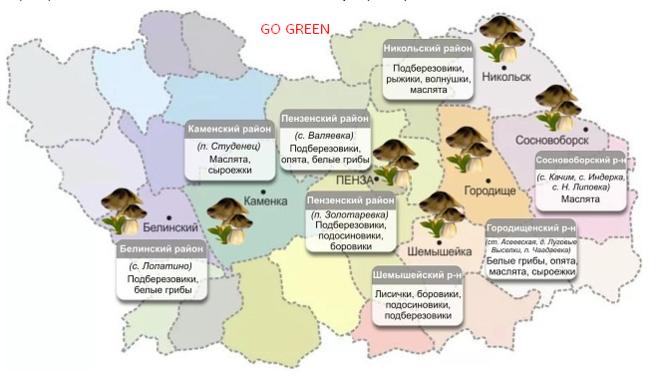 Грибы рязанской области в 2021 году: лучшие места и сезон сбора