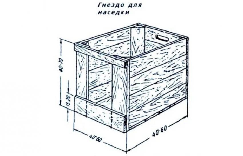 ✅ гнёзда для индюшек: постройка своими руками, размеры, чертежи, фото, видео - tehnoyug.com