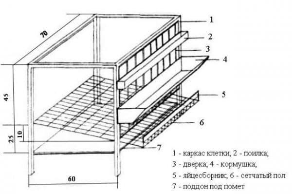 Клетки для бройлеров своими руками – изготавливаем недорогие конструкции из подручных материалов