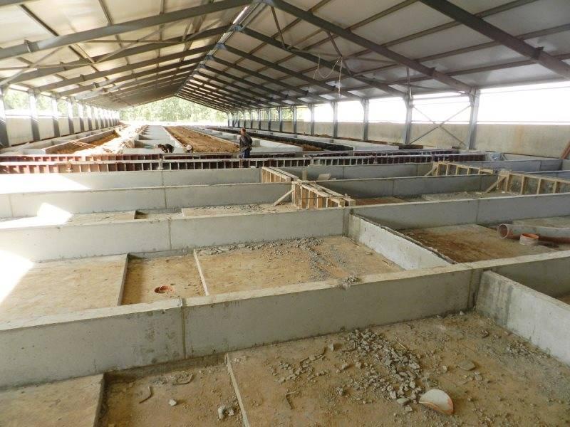 Как построить сарай для свиней: обустройство и утепление свинарника