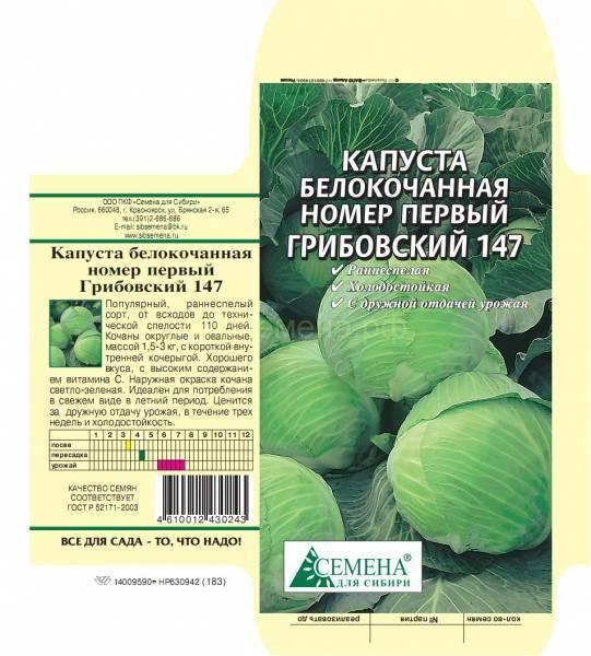 Ранние, средние и поздние сорта капустыдля разных регионов россии