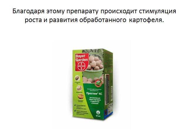 Престиж для обработки картофеля: инструкция по применению, отзывы
