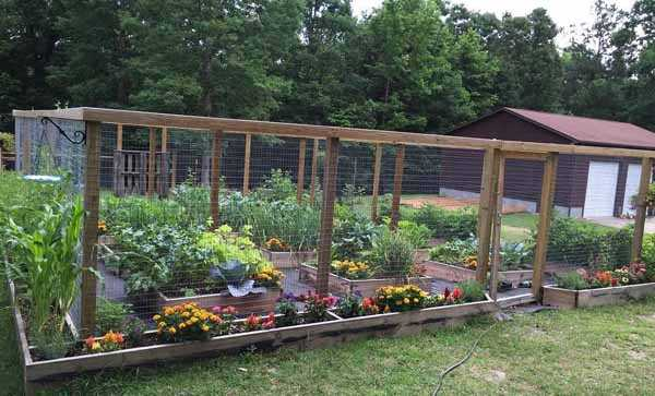 Огород своими руками: 115 фото и видео идеи подбора дизайна для красивых грядок