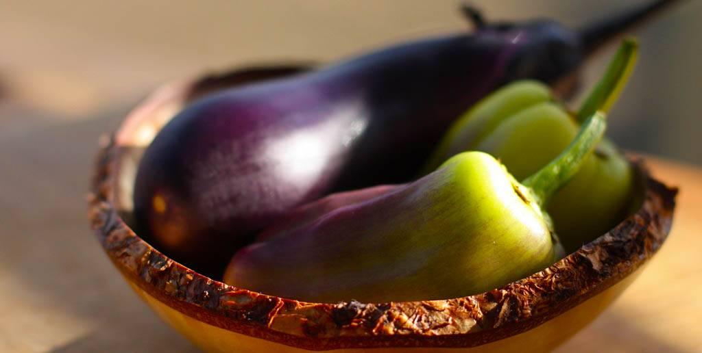 Можно ли сажать баклажаны в одной теплице с помидорами и рядом с огурцами, с чем нельзя вместе, выращивание и уход, если томаты — соседи в парнике из поликарбоната
