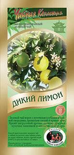 Описание растения лимон и его фото