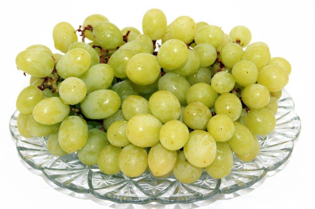 Виноград белое чудо: особенности сорта - ягоды   описание, советы, отзывы, фото и видео