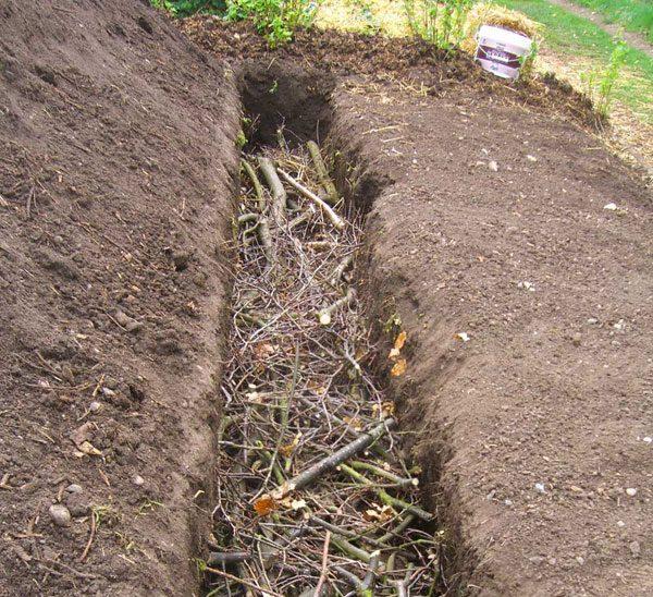 Теплая грядка для выращивания огурцов: как сделать своими руками, фото