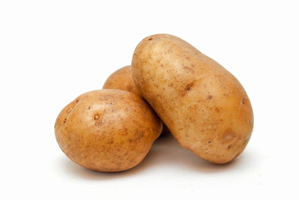 Сорт картофеля волат