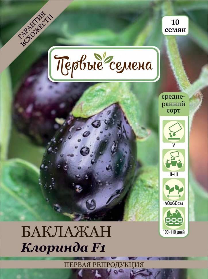 Баклажан «клоринда» – характеристика и особенности сорта, как выращивать
