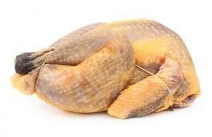 Мясо цесарки: сколько калорий, чем полезно