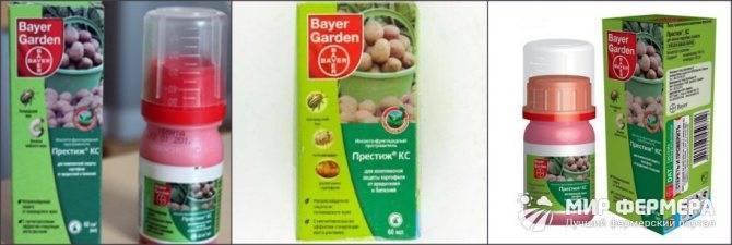 Обработка картофеля престижем - вред или польза