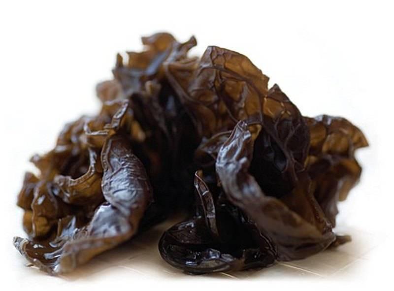 Гриб муэр  - китайский черный древесный гриб – вред или польза?