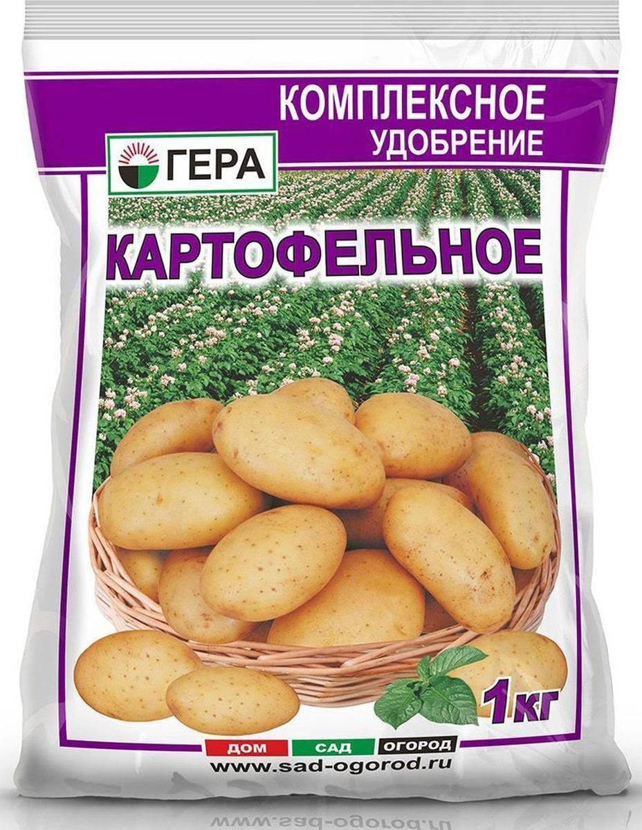 Самые полезные удобрения при посадке картофеля