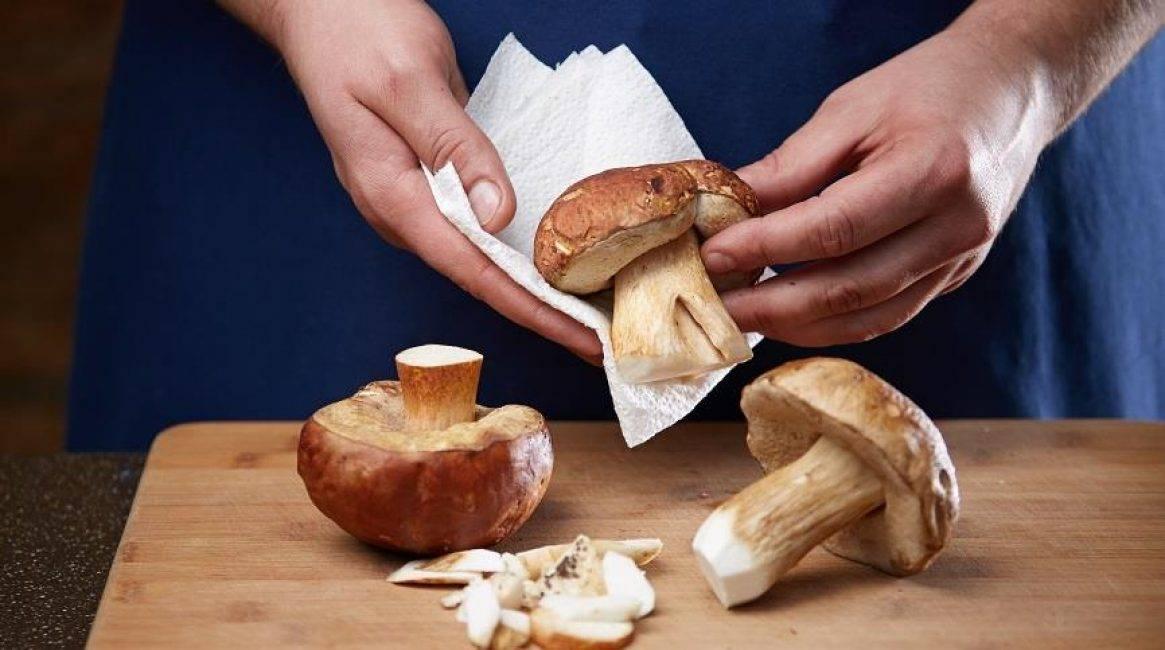 Как и чем нужно чистить грибы — нюансы обработки