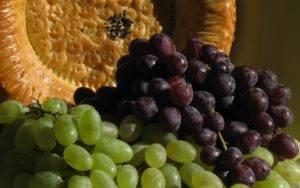 Сколько калорий в винограде в зеленом, черном, белом и красном