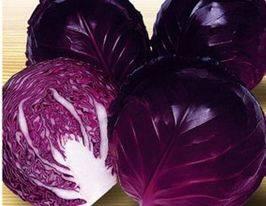 Агротехника выращивания капусты. обсуждение на liveinternet