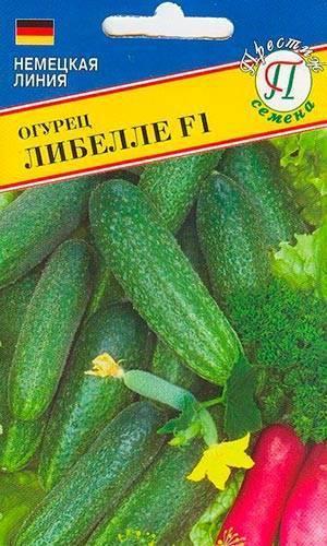Огурец либелле f1: отзывы, описание сорта, фото