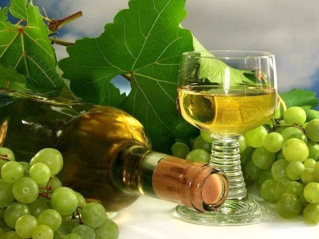 Описание винограда элегант сверхранний — достоинства, особенности, отзывы