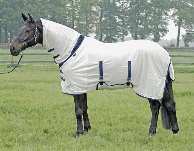 Попона для лошади: их предназначение и фото обзор попона для лошади: их предназначение и фото обзор