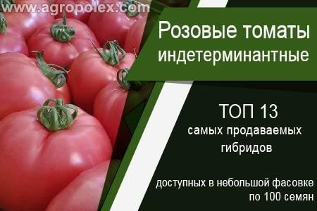 Томат кибо f1 описание сорта помидор, отзывы и фото