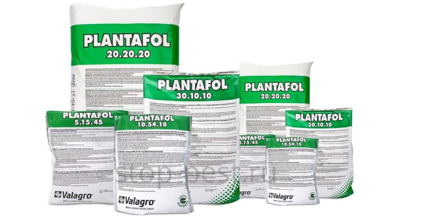 Плантафол и плантафид (отличия и как применять)