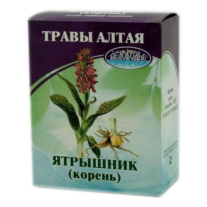 Ятрышник: лечебные свойства и противопоказания, применение в народной медицине - lechilka.com
